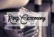 ring ceremony wedding velvet